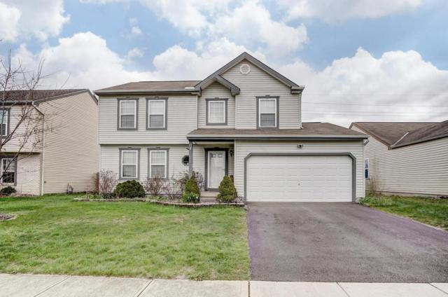 2464 Hoose Drive, Grove City, OH 43123 (MLS #218012681) :: Julie & Company