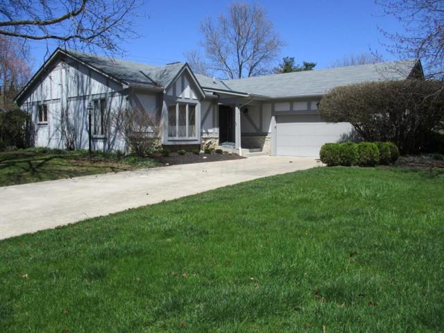 1084 Macgregor Avenue, Worthington, OH 43085 (MLS #218012685) :: Exp Realty