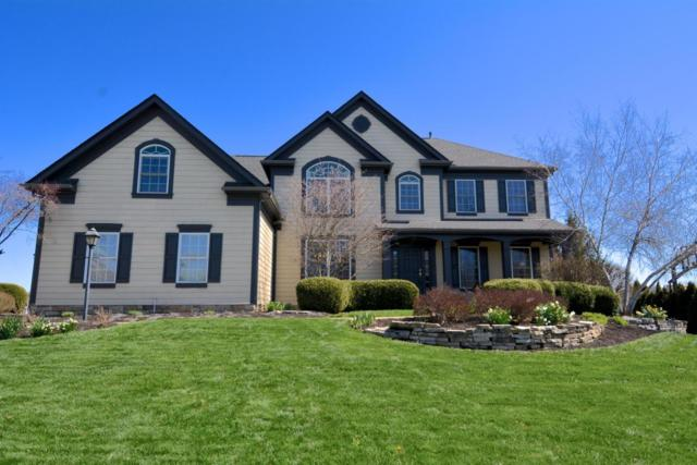 5371 Medallion Drive W, Westerville, OH 43082 (MLS #218012779) :: The Raines Group