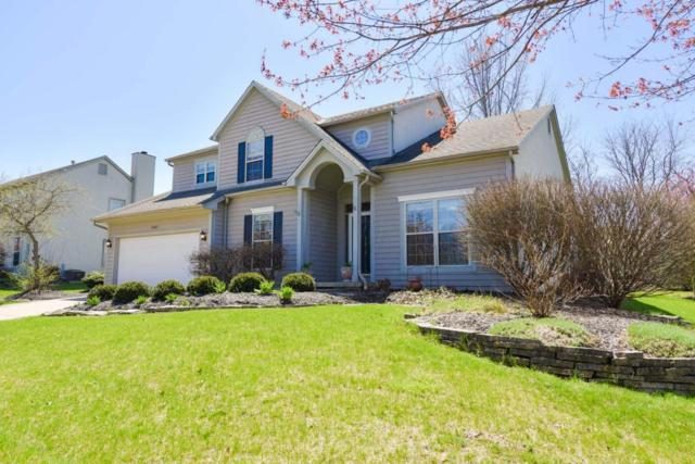 5582 Cloverdale Drive, Galena, OH 43021 (MLS #218012808) :: CARLETON REALTY