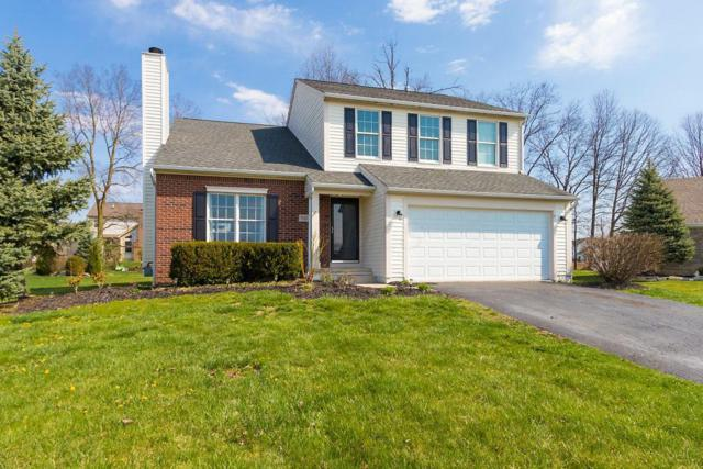 7121 Sanders Way, Westerville, OH 43082 (MLS #218013188) :: Signature Real Estate