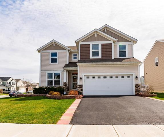 343 Linda Lee Lane, Lewis Center, OH 43035 (MLS #218013211) :: Shannon Grimm & Partners