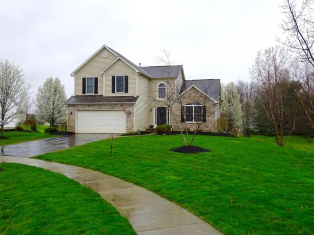 9229 Secretariat Place, Pickerington, OH 43147 (MLS #218013266) :: Signature Real Estate