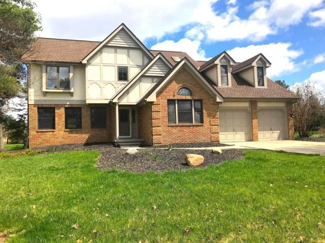 8950 Locherbie Court, Dublin, OH 43017 (MLS #218013269) :: Signature Real Estate