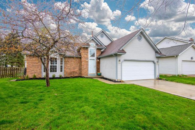 3936 Saddlehorn Drive, Columbus, OH 43221 (MLS #218013284) :: Shannon Grimm & Partners