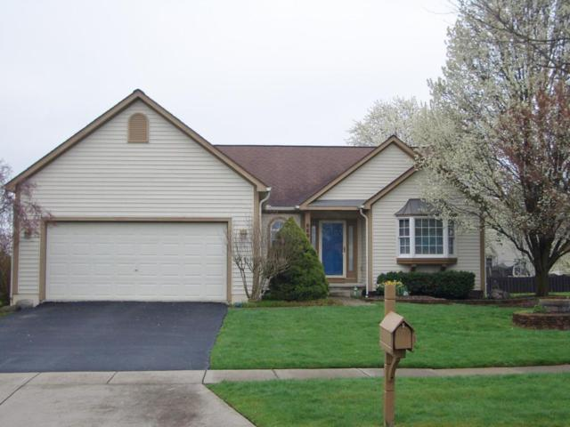 6697 Hilmar Drive, Westerville, OH 43082 (MLS #218013311) :: The Raines Group