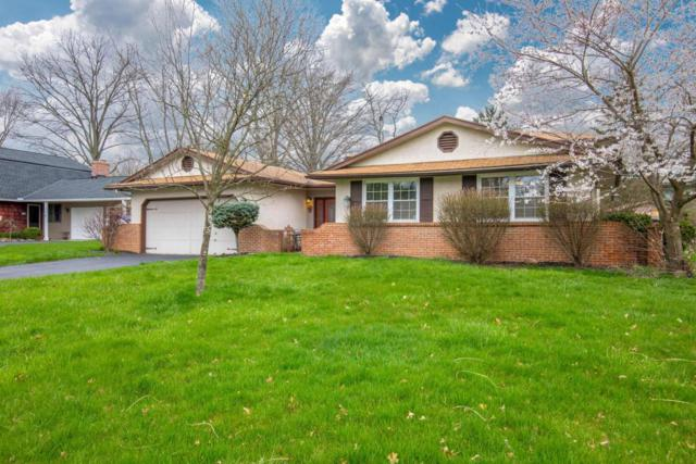 1360 Beechlake Drive, Columbus, OH 43235 (MLS #218013314) :: Signature Real Estate