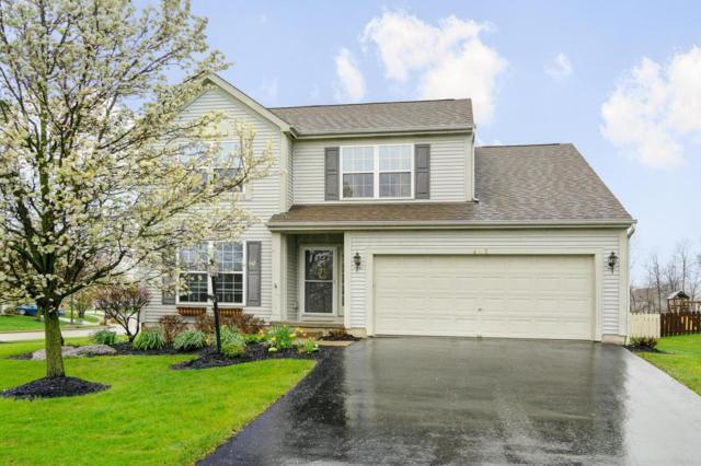 403 Grinnell Street, Pickerington, OH 43147 (MLS #218013341) :: Signature Real Estate