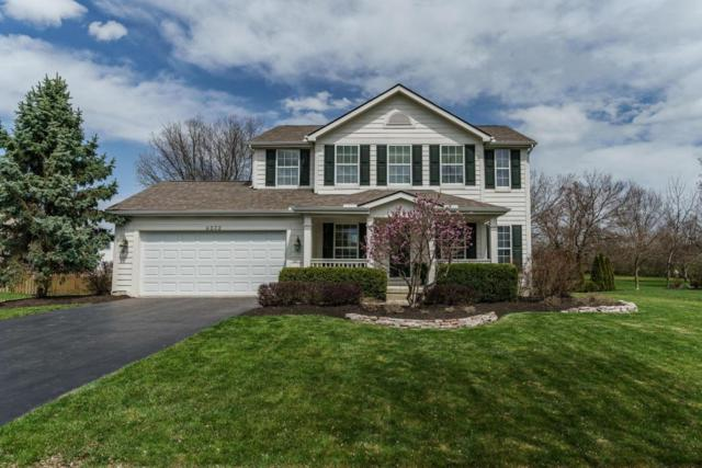 6232 Strider Lane, Hilliard, OH 43026 (MLS #218013372) :: Shannon Grimm & Partners