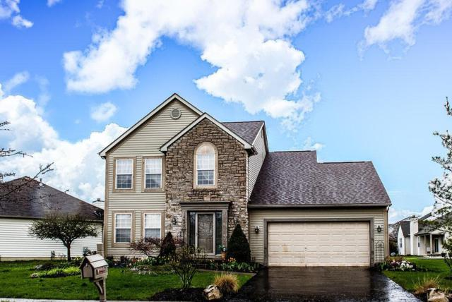 6695 Deagle Drive, Westerville, OH 43081 (MLS #218013381) :: The Raines Group