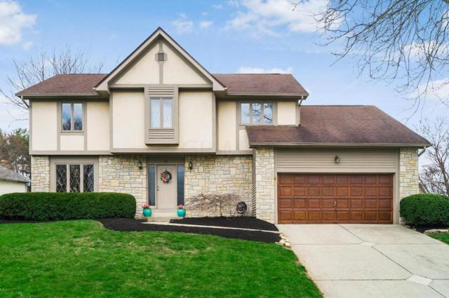 93 Executive Court, Westerville, OH 43081 (MLS #218013390) :: Shannon Grimm & Partners
