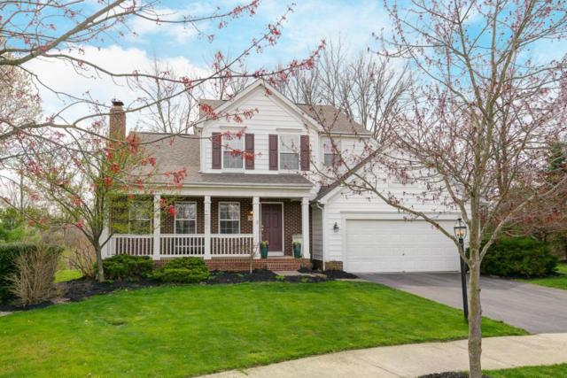 47 Timber Oak Court, Powell, OH 43065 (MLS #218013396) :: Shannon Grimm & Partners