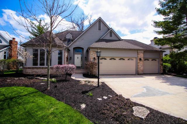 3479 Scioto Run Boulevard, Hilliard, OH 43026 (MLS #218013589) :: Signature Real Estate