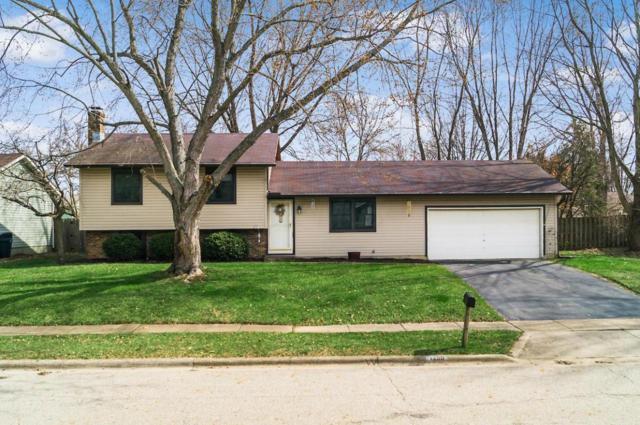 1290 Addison Drive, Reynoldsburg, OH 43068 (MLS #218013596) :: Exp Realty