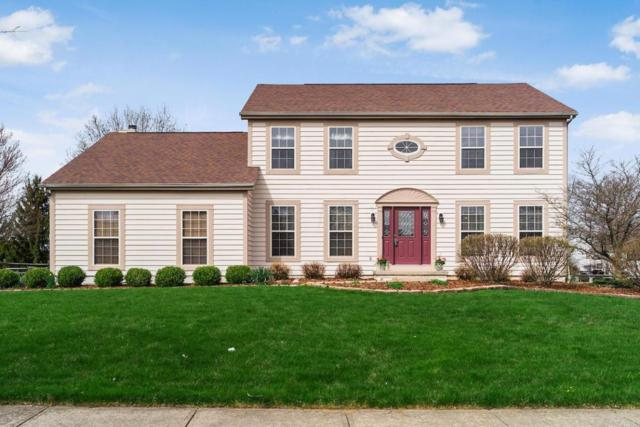 1135 Challis Springs Drive, New Albany, OH 43054 (MLS #218013713) :: CARLETON REALTY