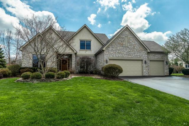 427 Nathan Drive, Powell, OH 43065 (MLS #218013782) :: Exp Realty