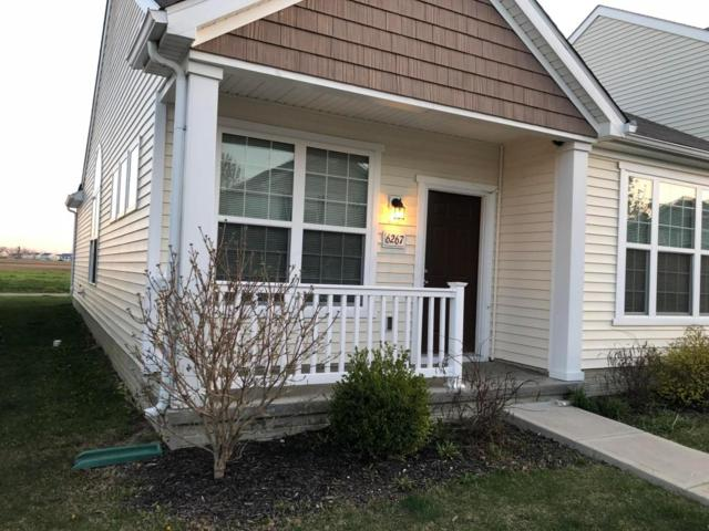 6267 Red Glare Drive, Galloway, OH 43119 (MLS #218013846) :: Berkshire Hathaway HomeServices Crager Tobin Real Estate