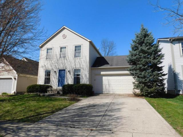 3523 Lindstrom Drive, Columbus, OH 43228 (MLS #218013934) :: Exp Realty