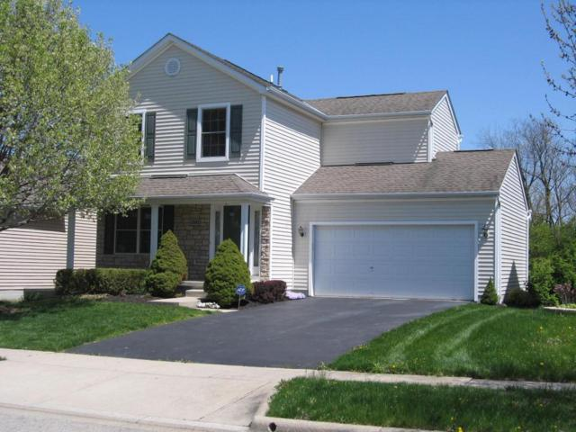 2142 Staghorn Way, Grove City, OH 43123 (MLS #218014514) :: Exp Realty