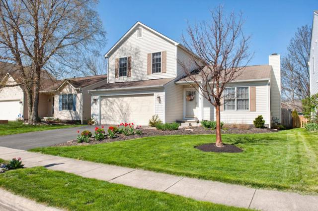 8573 Olenbrook Drive, Lewis Center, OH 43035 (MLS #218014603) :: Exp Realty