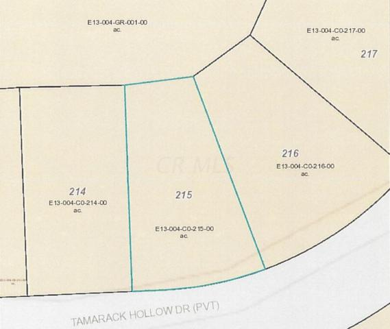 7326 State Route 19 Unit 4, Lot 215, Mount Gilead, OH 43338 (MLS #218014635) :: CARLETON REALTY