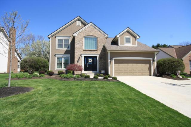 6262 Thorncrest Drive, Galloway, OH 43119 (MLS #218014689) :: Exp Realty
