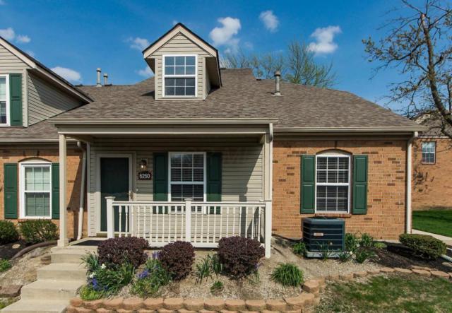 6250 Braelinn Drive, Dublin, OH 43017 (MLS #218014754) :: Berkshire Hathaway HomeServices Crager Tobin Real Estate