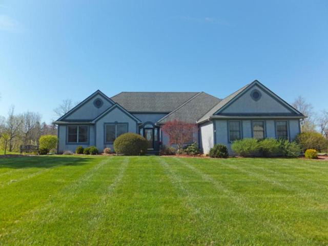9747 Wagonwood Drive NW, Pickerington, OH 43147 (MLS #218014824) :: Exp Realty