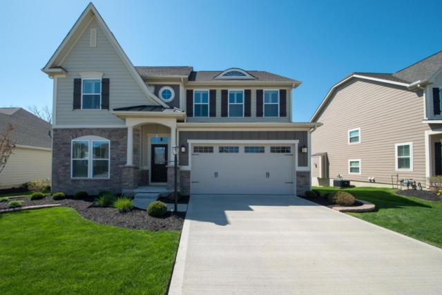 6237 Tournament Drive, Westerville, OH 43082 (MLS #218014903) :: RE/MAX ONE