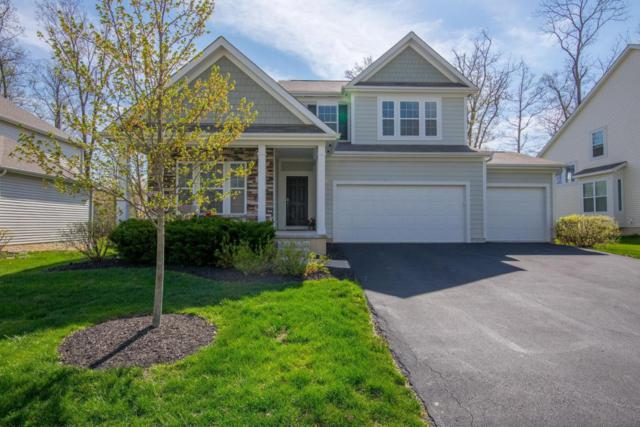 304 Seatrain Drive, Delaware, OH 43015 (MLS #218015004) :: Exp Realty