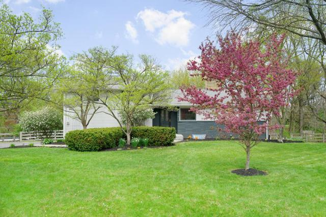 1388 Portage Drive, Columbus, OH 43235 (MLS #218015052) :: The Mike Laemmle Team Realty