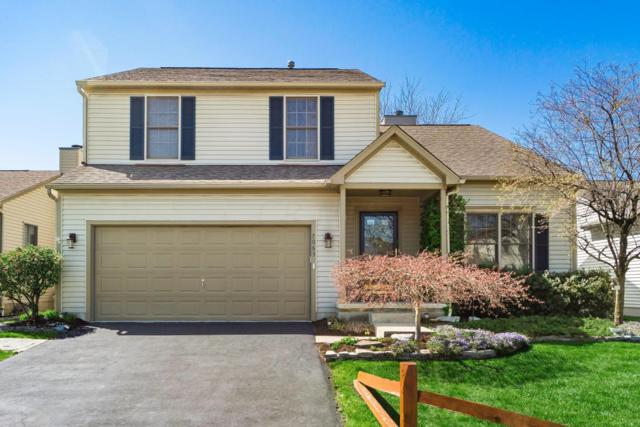 7063 Winchester Crossing Boulevard, Canal Winchester, OH 43110 (MLS #218015247) :: RE/MAX ONE