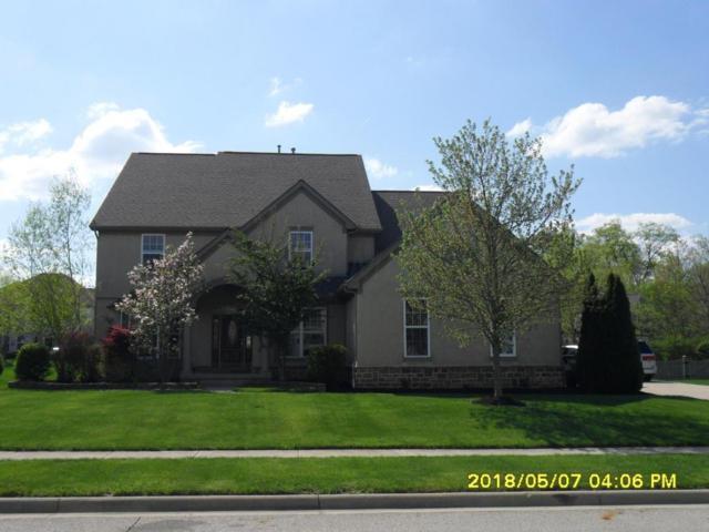 7844 Lydia Drive, Lewis Center, OH 43035 (MLS #218015275) :: CARLETON REALTY