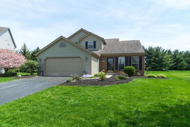 788 Blackthorn Way, Delaware, OH 43015 (MLS #218015618) :: RE/MAX ONE