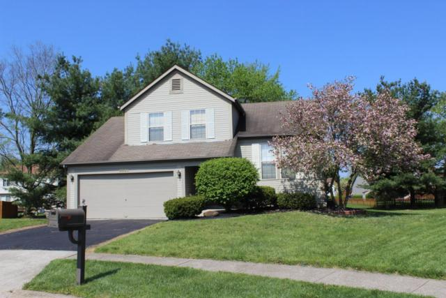 6900 Woody Court, Canal Winchester, OH 43110 (MLS #218015671) :: Exp Realty