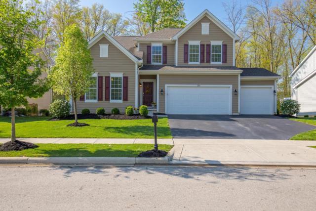 384 Seatrain Drive, Delaware, OH 43015 (MLS #218015839) :: Exp Realty