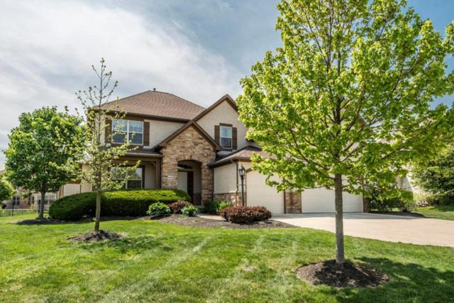 6408 Sea Drive, Lewis Center, OH 43035 (MLS #218016096) :: RE/MAX ONE