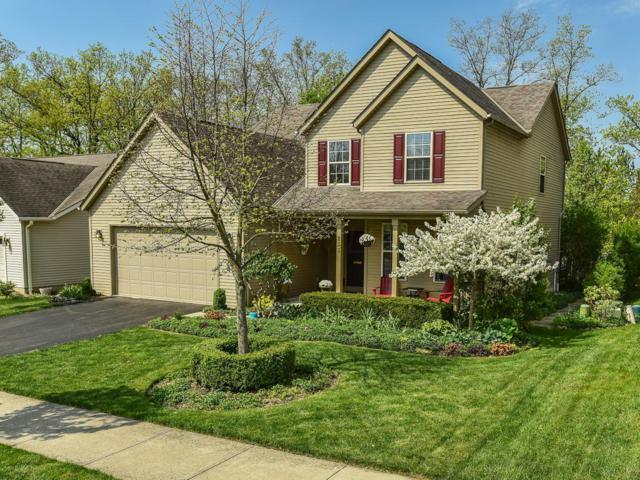 255 Restoration Drive, Marysville, OH 43040 (MLS #218016097) :: Exp Realty