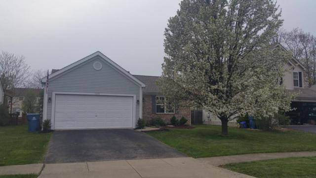 1492 Meadowlark Lane, Marysville, OH 43040 (MLS #218016138) :: Exp Realty