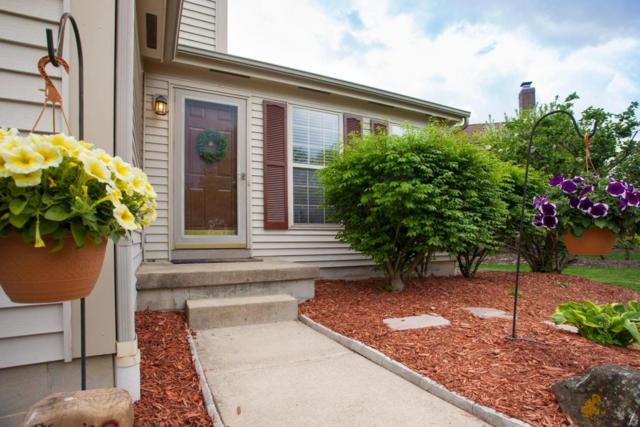 132 Bendelow Drive, Delaware, OH 43015 (MLS #218016194) :: Exp Realty