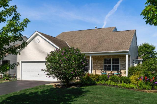 154 Hayfield Drive, Delaware, OH 43015 (MLS #218016629) :: Exp Realty