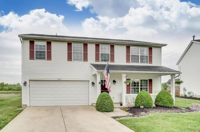 189 Glengary Drive, Delaware, OH 43015 (MLS #218016887) :: Berkshire Hathaway HomeServices Crager Tobin Real Estate