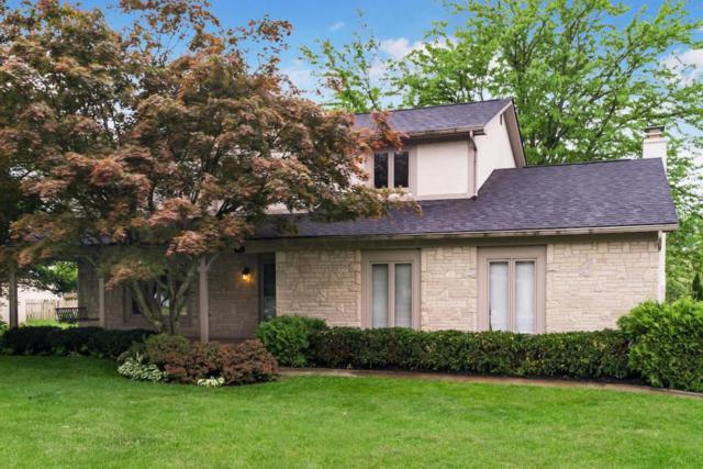 173 Shagbark Drive, Westerville, OH 43081 (MLS #218016937) :: RE/MAX ONE
