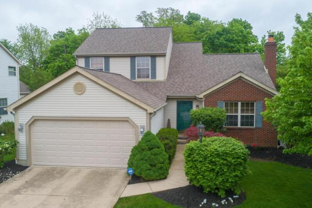 8391 Payson Drive, Lewis Center, OH 43035 (MLS #218017063) :: RE/MAX ONE