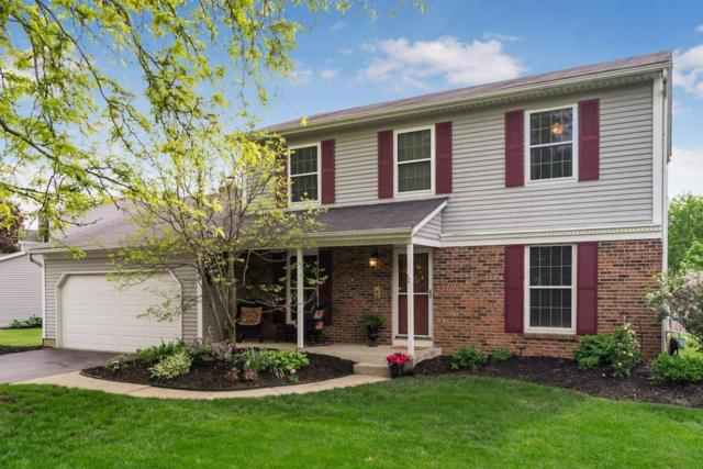 46 Spicewood Lane, Powell, OH 43065 (MLS #218017080) :: Signature Real Estate