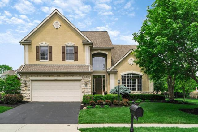 6602 Strathern Court, Dublin, OH 43016 (MLS #218017115) :: Exp Realty