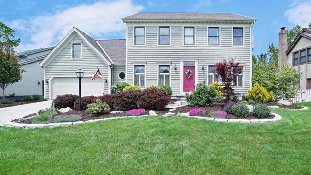 3368 Scioto Run Boulevard, Hilliard, OH 43026 (MLS #218017220) :: Signature Real Estate
