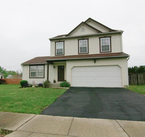 1535 Patricia Drive, Marysville, OH 43040 (MLS #218017293) :: Signature Real Estate