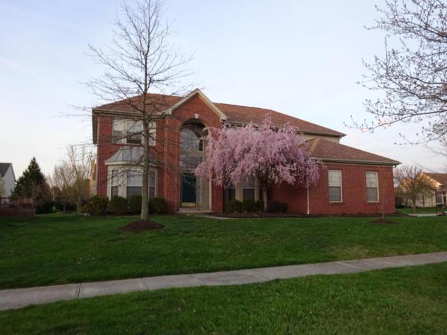 8032 Lombard Way, Dublin, OH 43016 (MLS #218017319) :: Signature Real Estate
