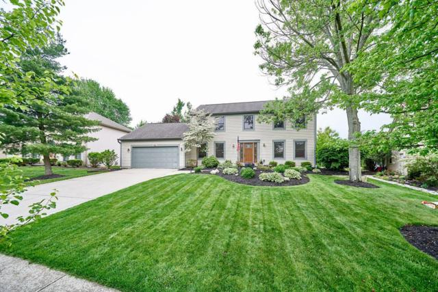 905 Aries Drive, Columbus, OH 43230 (MLS #218017341) :: Exp Realty